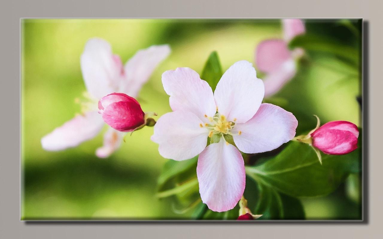 Картина HolstArt Цветы 89*54см арт.HAS-310