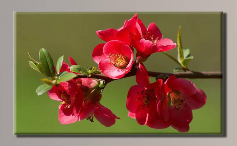 Картина HolstArt Цветы 89*54см арт.HAS-311, фото 2