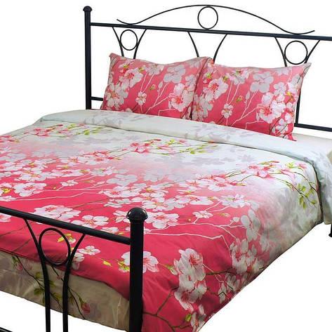 Комплект постельного белья Руно Евро бязь арт.845.114БК_4781 Сакура, фото 2