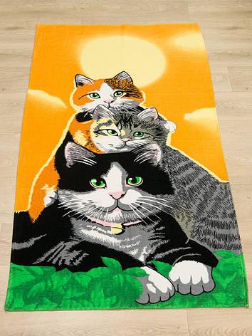 Полотенце пляжное Турция Cats 75*150 см, фото 2
