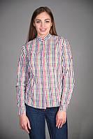 Женская рубашка для официанта в клетку разноцветная