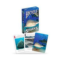 Покерные карты Bicycle Shark, фото 3