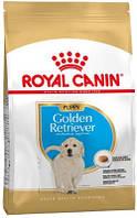 Royal Canin (Роял Канин) Golden Retriever Junior Сухой корм для щенков ретвиверов 12 кг