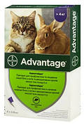 Advantage (Адвантейдж) 80 Капли от блох  для кошек 4-8 кг 4 шт