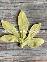 Молд лист Морозника пятилистник, 10смх8см