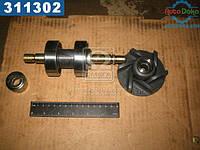⭐⭐⭐⭐⭐ Ремкомплект насоса водяного Д 245 (производство  Украина)  240-1307030