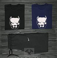 Мужской комплект две футболки + шорты Pit bull и Nike черный синий и серый