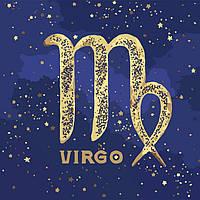 Картина по номерам, краска металик, знак зодиака Дева, 50x50 см., Идейка