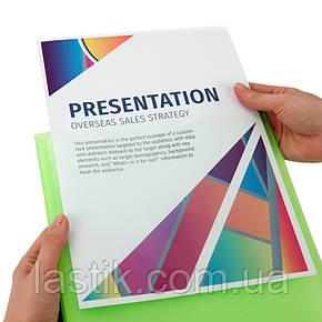 Дисплей-книга з прозорою зовнішньою кишенею, А4, (зелена), фото 2