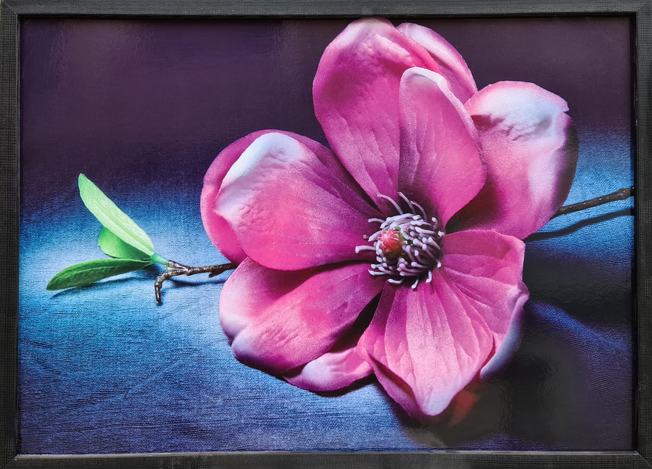 "Фотокартина в деревянной раме ""Flower 10"", 50х70 см"