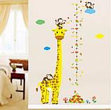 """Наклейка ростомер в детскую комнату """"Жираф"""" 130х86см (v87594), фото 2"""