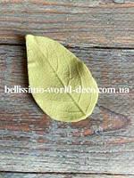 Молд лист Яблони реалистичный  5см х 3см