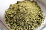Протеин тыквенный,  протеин из семян тыквы 60% белка, гарбузовий протеїн, дой-пак 250г Veganprod, фото 3