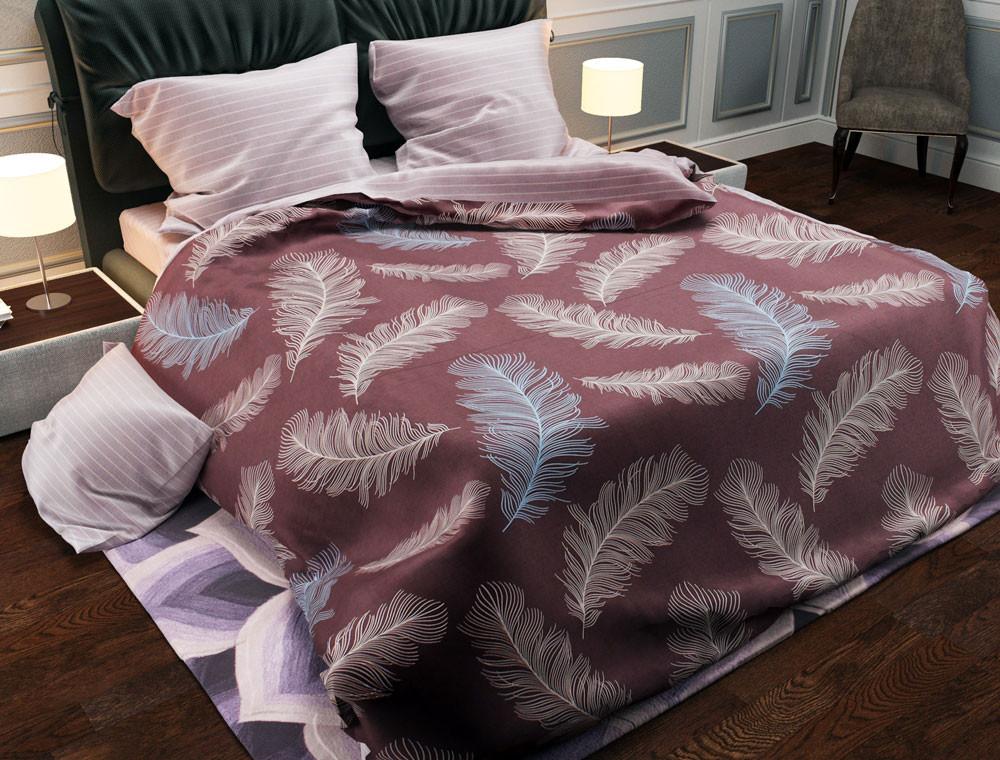 Двуспальный комплект постельного белья евро 200*220 хлопок  (13986) TM KRISPOL Украина