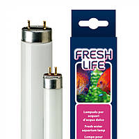 Люминесцентная лампа для аквариумов FRESHLIFE 14W T8