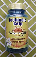 Йод Келп Nature's Life Icelandic Kelp 250 капсул, фото 1