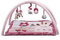 Nattou Развивающий коврик с дугами Шарлота и Рози   655224, фото 1