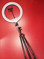 Кольцевая лампа кольцевой свет led на штативе для фото и видеосьемки