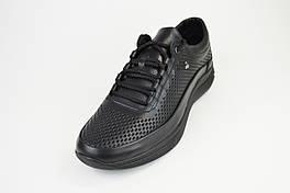 Кросівки перфоровані Extrem 1851 Чорні шкіра