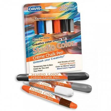 Крейду Davis Essential Colors барвний, для вовни, волосся, шкіри, фото 2
