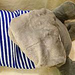 Плед мягкая игрушка 3 в 1  Котик серый  (28), фото 3