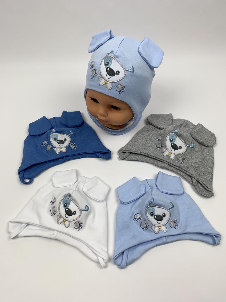 Детские польские демисезонные трикотажные шапки на завязках для мальчиков оптом, р.36-38 40-42, Ala Baby