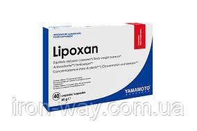 Yamamoto Nutrition Lipoxan 40 caps