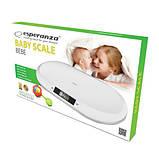 Весы для новорожденных Esperanza EBS019 Bebe, фото 2