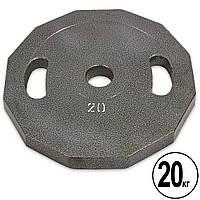 Блины (диски) стальные с хватом окрашенные d-52мм Newt 20кг (сталь окрашенная, серый) PZ-NT-5221-20