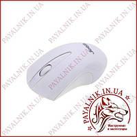 Мышка безпроводная Jedel W120 White