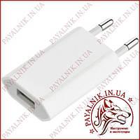 Сетевое зарядное устройство 5v 1a USB (T4)