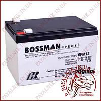 Акумулятор свинцево-кислотний Bossman Profi 12v 12AH/20HR (6FM12)