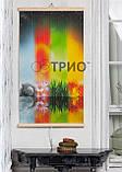 Обогреватель-картина инфракрасный настенный ТРИО 400W 100 х 57 см, сезоны, фото 2