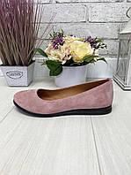 36 р. Туфли женские замшевые на низком ходу, из натуральной замши, натуральная замша, фото 1