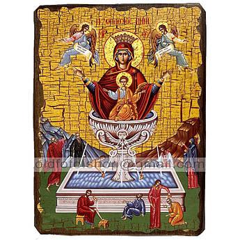 Живоносный Источник Икона Пресвятой Богородицы ,икона на дереве 130х170 мм