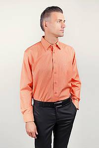 Рубашка Fra №873-19 цвет Оранжевый