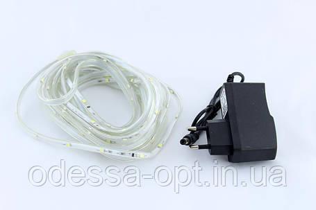 Светодиодная LED гирлянда Xmas Star Light W 12V (белый диод), фото 2