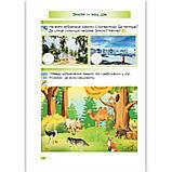 Зошит Я досліджую світ 2 клас Частина 1 До підручника Бібік Н. Авт: Лабащук О. Вид: Підручники і Посібники, фото 4