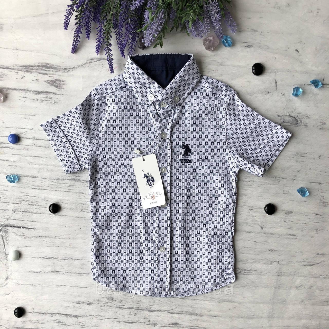 Летняя рубашка на мальчика 5. Размер 3 года, 4 года, 5 лет, 6 лет, 7 лет, 8 лет, 9 лет, 10 лет, 11 лет, 12 лет