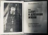 Плач про духовне життя. Одеський старець схиархімандрит Іона (Ігнатенко), фото 3