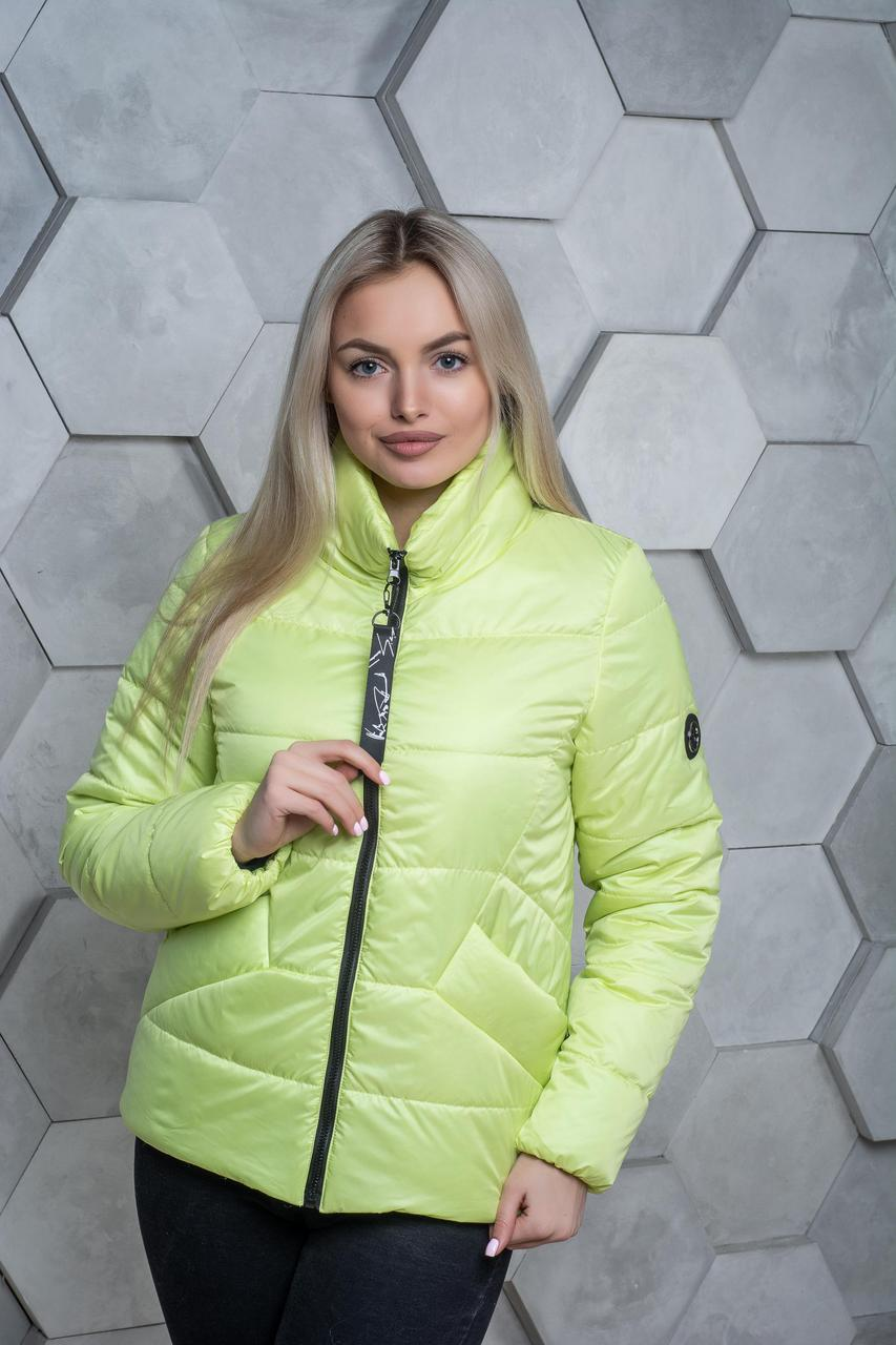 Демисезонная женская куртка Карина 4 цвета(42-54)