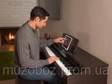 Цифровое пиано Yamaha YDP-103 палисандр, фото 3