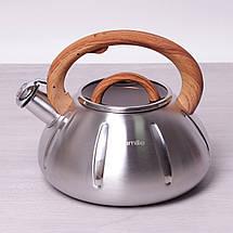 Чайник Kamille 3л из нержавеющей стали со свистком и стеклянной крышкой для индукции, фото 3