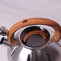 Чайник Kamille 3л из нержавеющей стали со свистком и стеклянной крышкой для индукции, фото 2