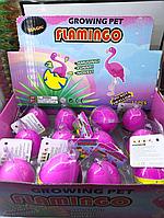 Вырастайка ''Яйцо Фламинго''