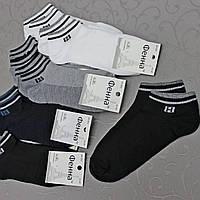 """Мужские носки, СЕТКА,  """"Фенна"""", 41-47 р-р .  Женские носочки, носки для подростков, фото 1"""