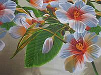 Ткань для пошива постельного белья бязь голд Абрикосовый цвет