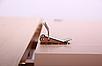 Стол обеденный раздвижной Чедер AMF бук беленый, фото 8