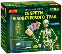 """Научная игра """"Скелет человека"""" (рус) 12115017Р"""