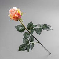 Роза Премиум, Н 77 см, силикон, Искусственный цветок, Днепропетровск